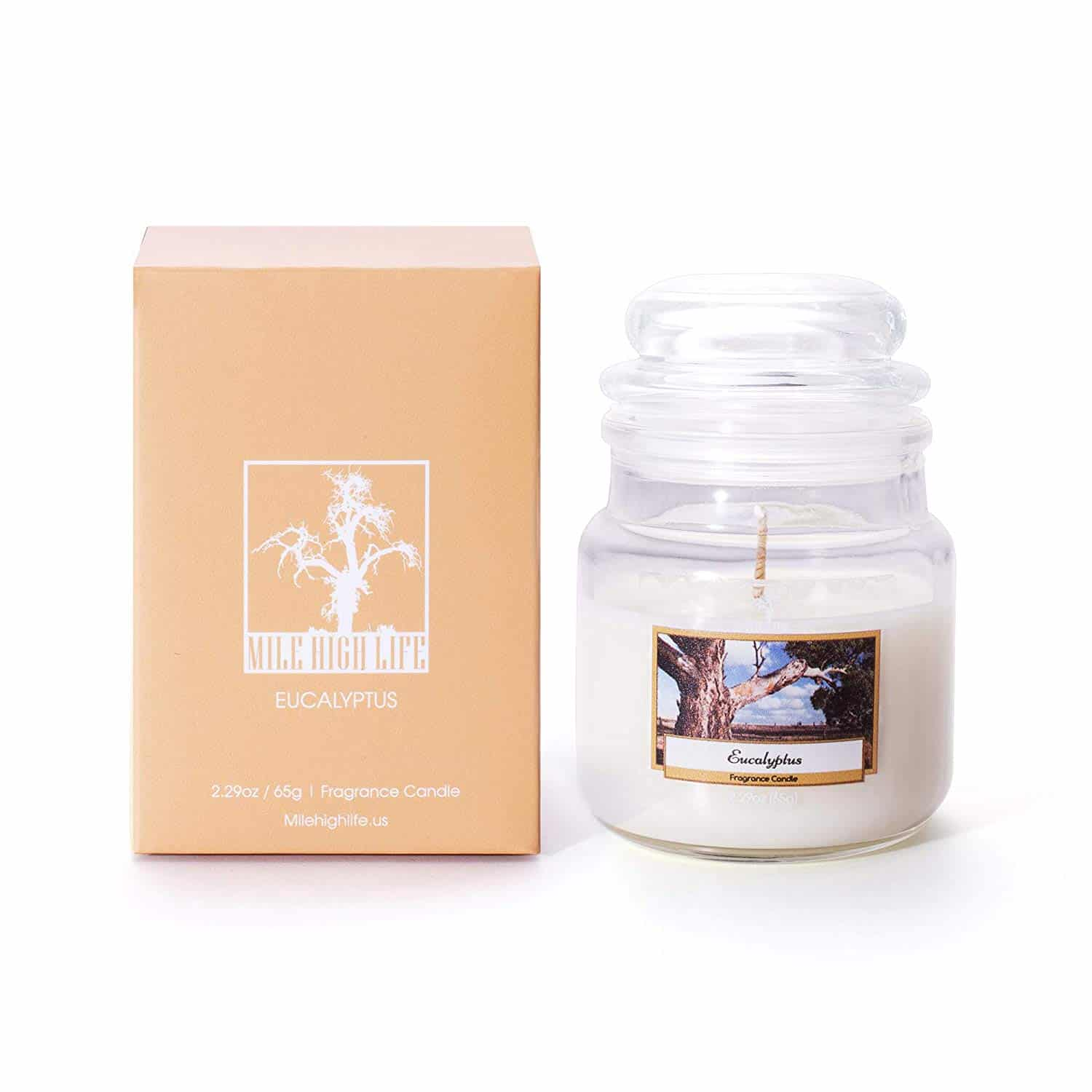 Mile High Life 2 in 1 Soy Candle