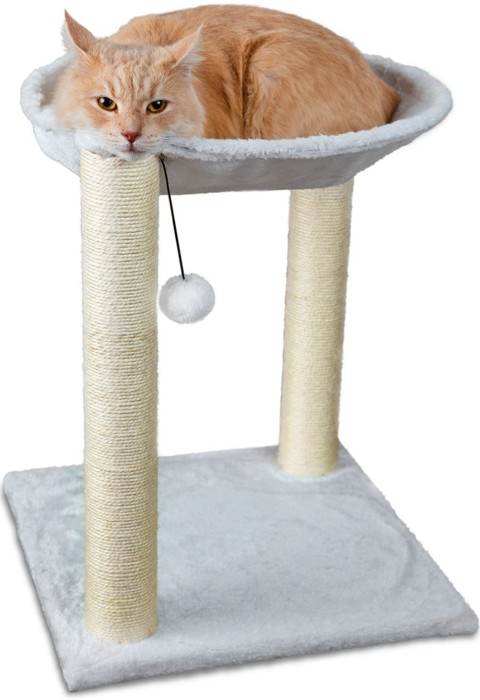 Paws & Pals 3-in-1